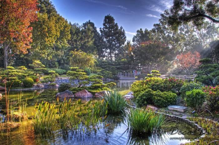 Japanese Friendship Garden San Jose  2018 All You Need