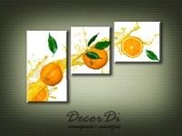 modulnaya_kartina_apelsini_19