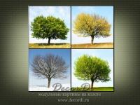 modulnaya_kartina_priroda_derevia_77