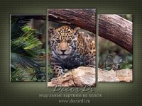 modulnaya_kartina_priroda_koshki_36