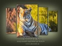 modulnaya_kartina_priroda_koshki_38