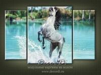 modulnaya_kartina_priroda_loshadi_27