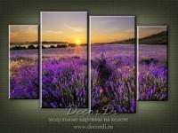 modulnaya_kartina_priroda_pole_50