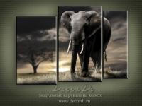 modulnaya_kartina_priroda_slon_3