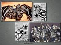 modulnaya_kartina_raznoe_zebra_4