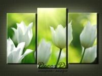 modulnaya_kartina_sveti_zelenoe_13